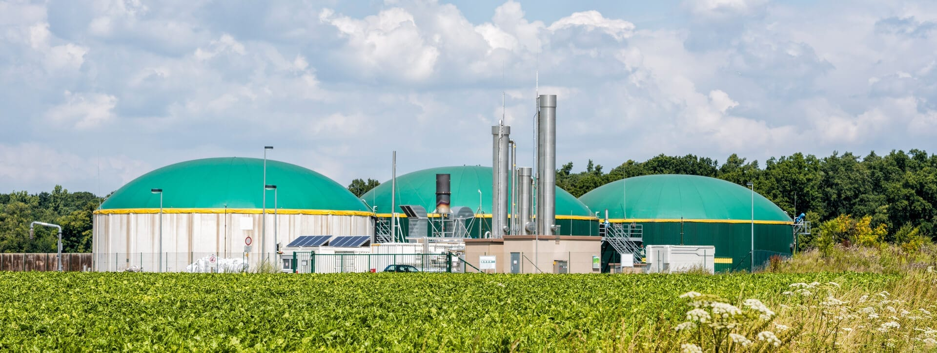 Skyline Energy - Biogas